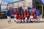 全国スポーツ少年団軟式野球交流大会ブロック大会